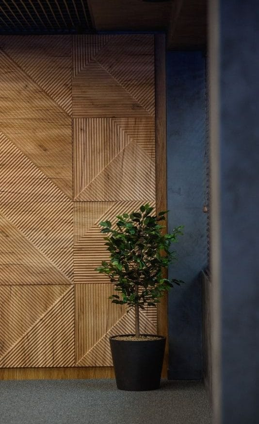 hallway with plant and wooden design- staffing office